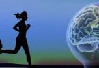 cerebro-ejercicio