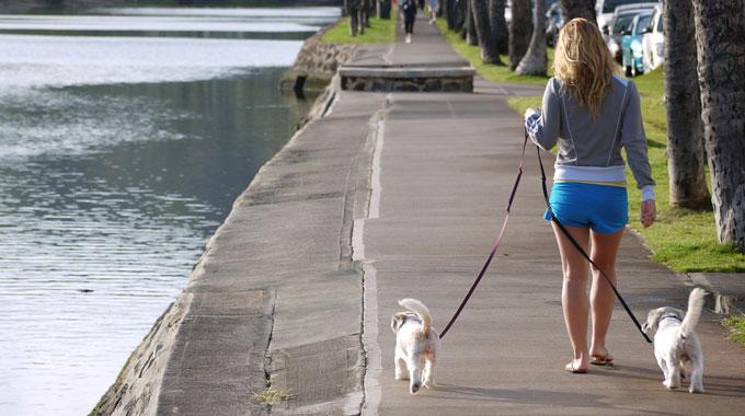 paseando-con-dos-perros