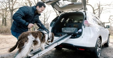 426183286_Nissan_X_Trail_4Dogs-940x627